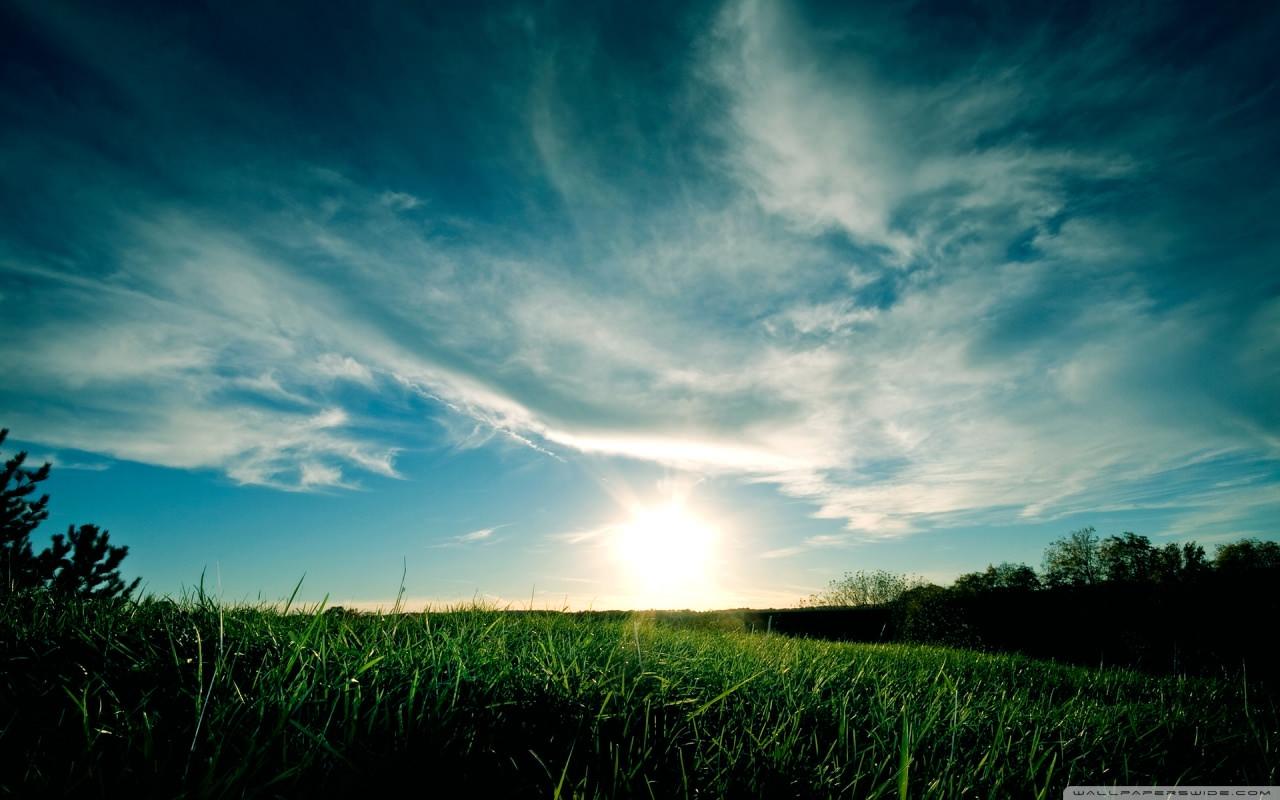 sunny_day_summer-wallpaper-1280x800